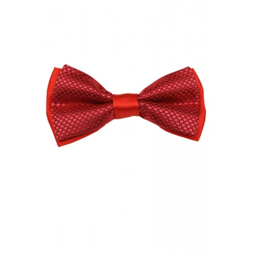 Краватка-метелик RC2711-10