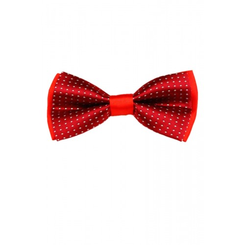 Краватка-метелик RC2711-98