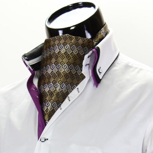 Men`s Pattern Paisley Ascot Cravat CH 9020-1
