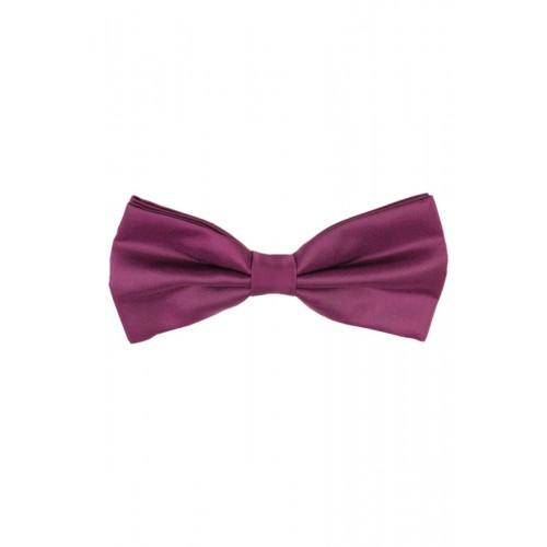 Краватка-метелик RC2127-22