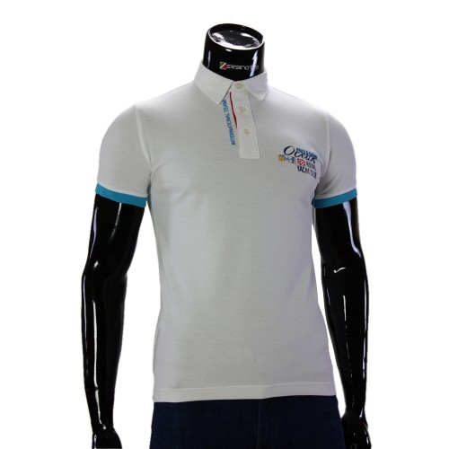 Мужская рубашка поло D 243-6