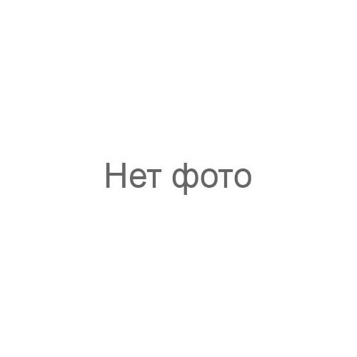 Мужской шейный платок аскот CH 9050-10